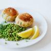 Lachs-Kartoffel-Frikadellen und Erbsensalat mit Zitronendressing